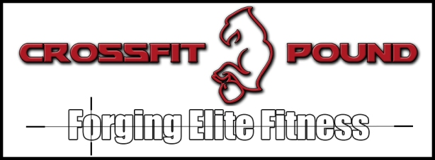 Crossfit Pound Forging Elite Fitness